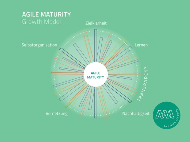 Agile-Maturity-Growth-Model