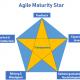 Agile Maturity Star Newwork Academy